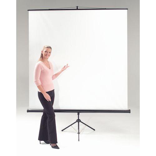Screens Budget tripod portable projector screen