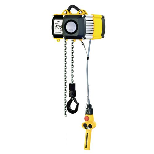 Electric Chain Hoist With Hook: 250Kg Electric Chain Hoist Hook Susp
