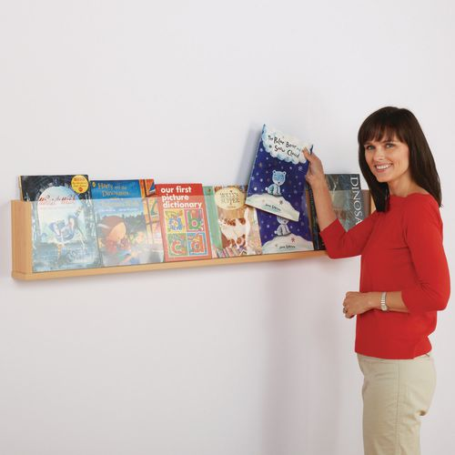 Literature Holders Shelf style wall mounted leaflet dispenser