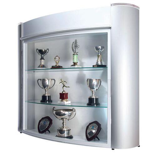 Wall mounted trophy showcase