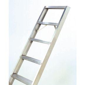 Shelf ladders