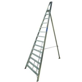 Groundsman ladder