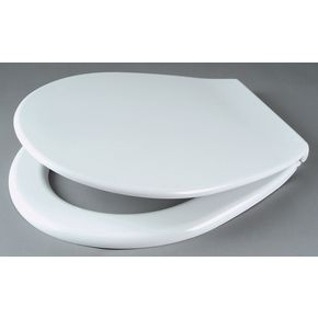 International toilet seat and cover