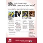 Guidance posters - Welsh Health and Safety Law poster